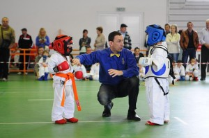 karate-851715_640-300x199