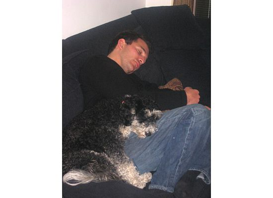 Thumbnail image for sleepingdog.jpeg