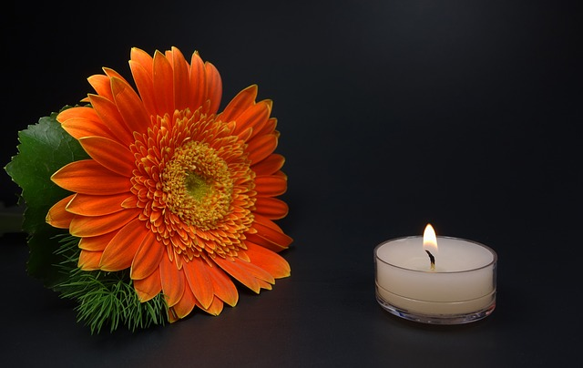 Pixabay (https://pixabay.com/en/romantic-candle-flower-mourning-453802/)