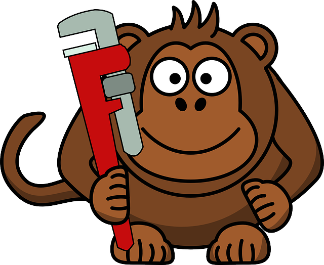 monkey-152685_640