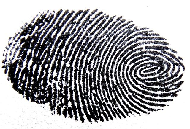 fingerprint-456483_640